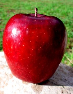 783846_bright_red_apple